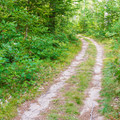 Typical trail for hiking and biking.- Bear Brook State Park