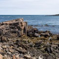 Gorgeous rock formations line your hike.- Cliff Walk