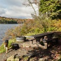 A typical site in Grout Pond Campground.- Grout Pond Campground