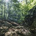 Ascending the Quarry Hill Trail.- Brace Mountain