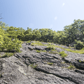 A bald ridge along the South Taconic Tail.- Brace Mountain