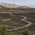 The Loop Road from the trail.- Broken Top Loop Hike