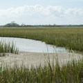 Little Tybee's interior is a network of creeks and marsh- Little Tybee Island