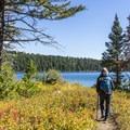 Hiking along the west shore of Phelps Lake.- Phelps Lake Loop Hike