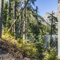 The west shore trail has lots of ups and downs.- Phelps Lake Loop Hike