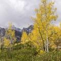 Fall on the Taggart Lake Trail.- Beaver Creek and Taggart Lake Loop Hike