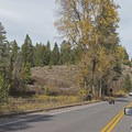 A family of grizzly bears cross the road and into to a small swampy area. Wildlife in the park tends to stop traffic, so be sure to drive carefully.- Signal Mountain Trail