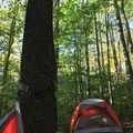 A look at the walk-in campsite at Kentuck Campground.- Kentuck Campgrounds