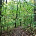 One of the roads around the campsite.- Kentuck Campgrounds