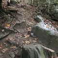 There was no trail, and some of the rocks can get slippery.- Cucumber Falls