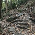 Some of the stairs are not very even.- Cucumber Falls