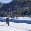 Beautiful conditions for a snowshoe beside the Snake River.- Snake River Snowshoe via Jackson Lake Dam