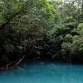 Blue Lagoon.- Rio Celeste
