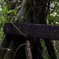 Moss and vines entangle trail signs.- Rio Celeste