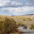 The Steens Mountain Backcountry Byway.- Steens Mountain Quaking Aspen Fall Foliage