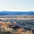 The high desert of the Steens Mountain Wilderness.- Steens Mountain Quaking Aspen Fall Foliage