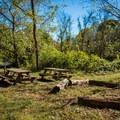 Picnic area at Hominy Creek Greenway.- Hominy Creek Greenway