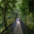 One of the six hanging bridges.- Mistico Arenal Hanging Bridges Park