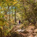 Fall along the Buck Spring Trail to Mount Pisgah.- Mount Pisgah via the Buck Spring Trail