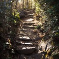 Sections of the Buck Spring Trail become quite steep near the summit.- Mount Pisgah via the Buck Spring Trail