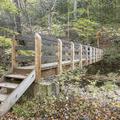 A walking bridge over the Woodland Creek.- Wittenberg + Cornell Mountains