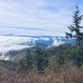 Getting above the clouds on the approach to Clingmans Dome.- Appalachian Trail: Fontana Dam to Clingmans Dome