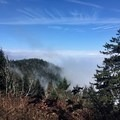 Getting above the clouds as we approach Clingmans Dome.- Appalachian Trail: Fontana Dam to Clingmans Dome