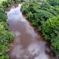 Aerial view of the river in the summer.- Caño Negro Wildlife Refuge