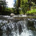 Water flows freely through most of the resort.- Tabacon Hot Springs