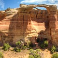 Rim Arch.- Rattlesnake Canyon Arches