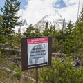 This is grizzly country, so take appropriate precautions when hiking.- String Lake Loop
