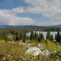 Some 200 feet above the lake, marmots warm up in the sun.- String Lake Loop