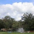 The spring nestled at the base of a hill that is perfect for picnics!- Wekiwa Springs State Park