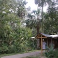 A nature center with all sorts of educational tidbits.- Wekiwa Springs State Park