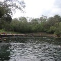 Looking down to the spring.- Wekiwa Springs State Park