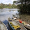 Use canoes to get a unique view of the spring run.- Wekiwa Springs State Park
