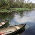 Canoe rentals are available.- Wekiwa Springs State Park