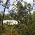 The first site is very private, perfect for a secluded getaway!- Wekiwa Springs State Park Campground