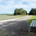 Shady bench early in the trail.- White Point Beach Hike