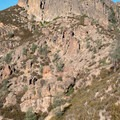 Pinch or Lynch Wall, Pinnacles National Park.- Climbing West of the Reservoir