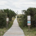 The boardwalk to the beach is little longer than at other grounds.- Frisco Beach Campground