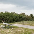 Each site has a picnic table.- Frisco Beach Campground