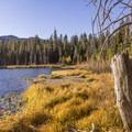 Sotcher Lake showing fall color.- Sotcher Lake