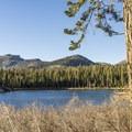 Sotcher Lake.- Sotcher Lake