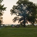 The picnic area at sunset.- Burton Island State Park