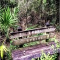Bench at Shepard's Spring.- Cathedral of Palms Trail