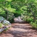 Campground path.- Pawtuckaway State Park Campground