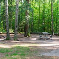 Typical campsite.- Bear Brook State Park Campground