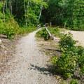 Nature trail around the campground pond.- Bear Brook State Park Campground