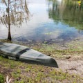 Canoe rentals are available!- Blue Spring State Park